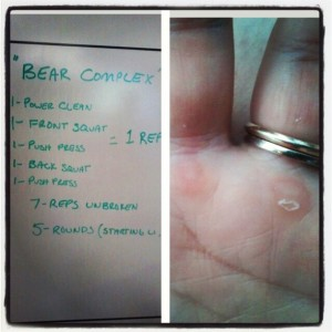 ex bear complex